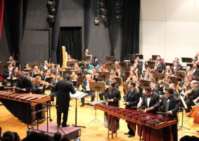 marimba-nandayapa-06